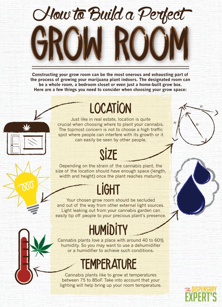 How to Build a Perfect Grow Room: Whether you're starting a marijuana dispensary, or just cultivating for one, it's a good idea to understand the process that goes into constructing the ideal grow room.