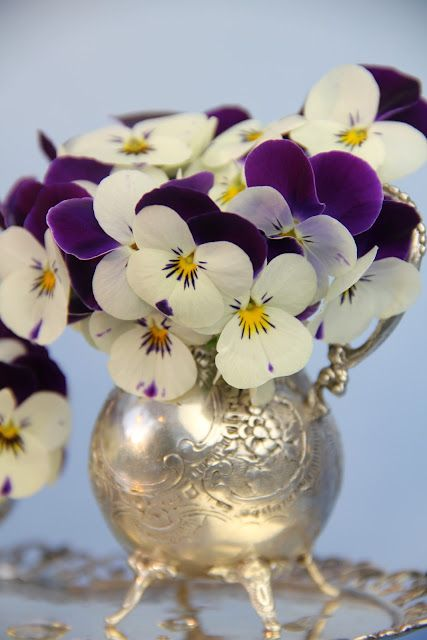 violets in silver ~ how lovely  (we must get the silver out...)