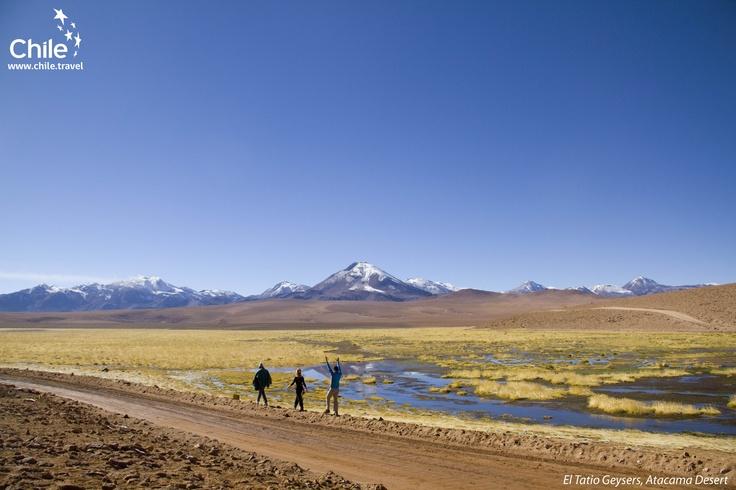 El Tatio Geysers, Atacama Desert, Chile
