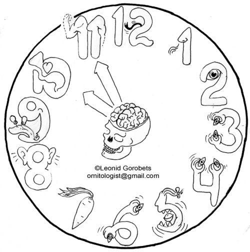 Cranial nerves mnemonics. Leonid Gorobets. Funny anatomy