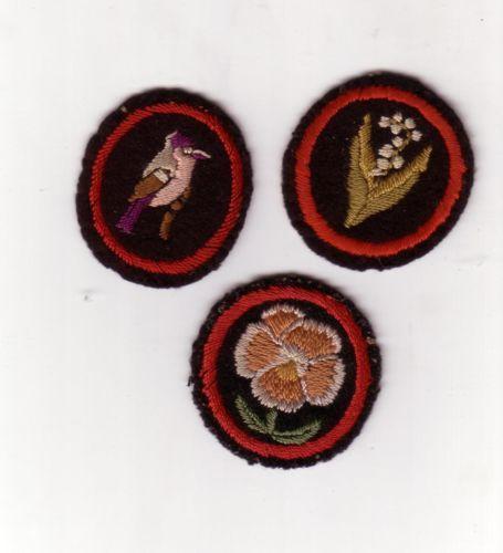 Obsolete-Girl-Guide-embroidered-patrol-emblem-badges Not sure if UK