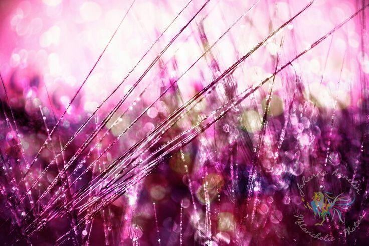 Sinful nature series www.melancholic.photos