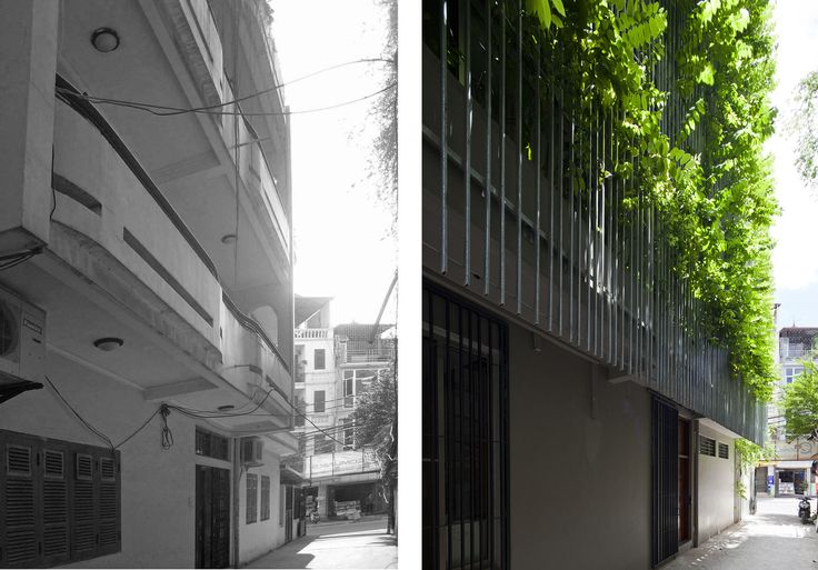 Gallery of Green Renovation / Vo Trong Nghia Architects - 11