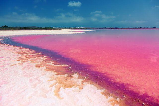 Laguna Salada de Torrevieja  Spain is a natural phenomenon, where the water looks pink due to a type of special algae.  Laguna Salada de Torrevieja Espagne est un phénomène naturel, où l'eau semble rose en raison d'un type d'algue spéciale.