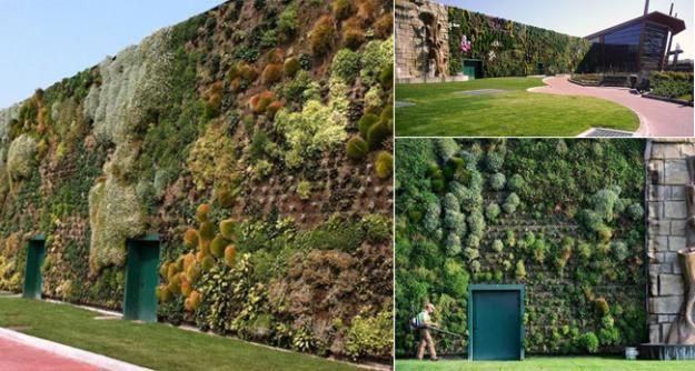 World's largest vertical garden in Milan made up of 44,000 plants.  Exquisite!
