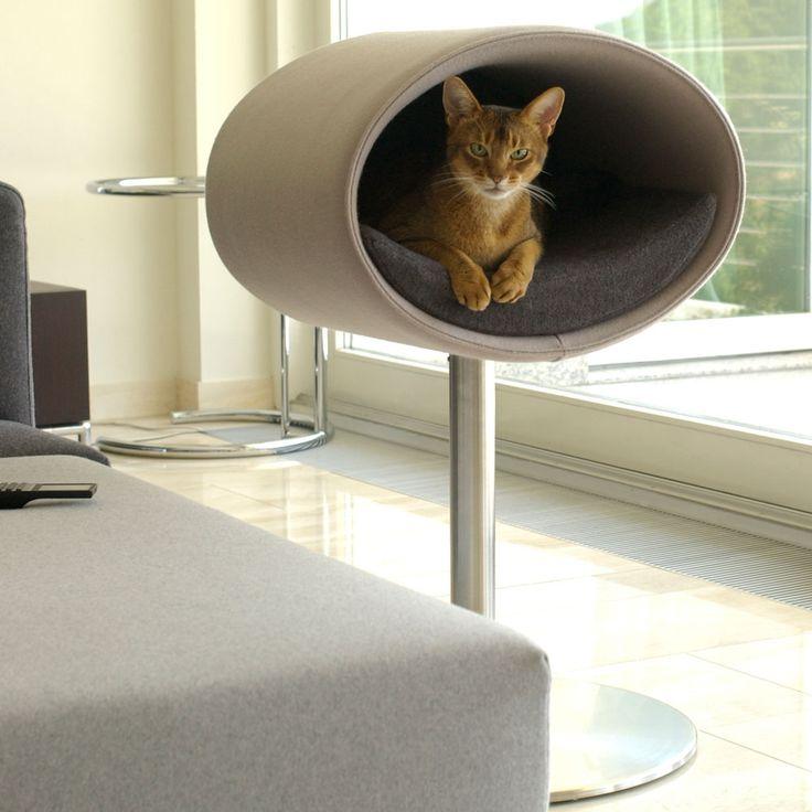 die besten 25 outdoor kratzbaum ideen auf pinterest. Black Bedroom Furniture Sets. Home Design Ideas