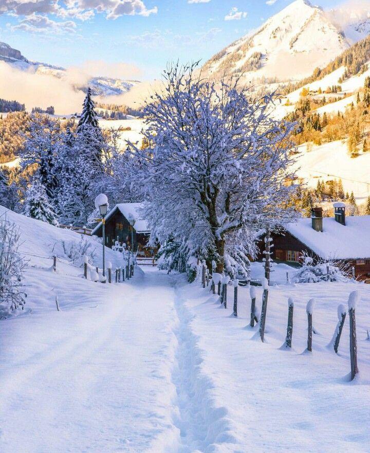 Beautiful winter morning (Switzerland)