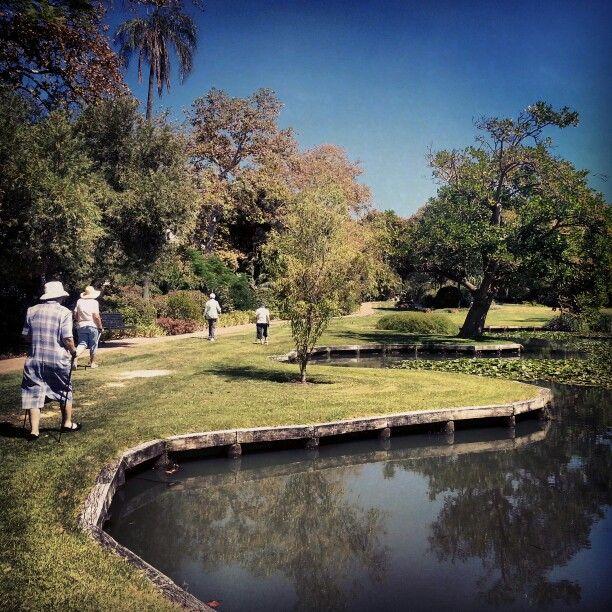 Seniors Nordic walking at Queens gardens Perth CBD #nordicwalking #polewaking
