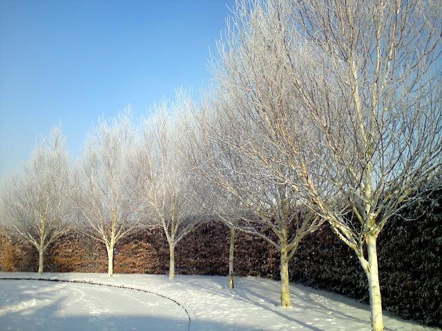 ... Garden Design Kildare