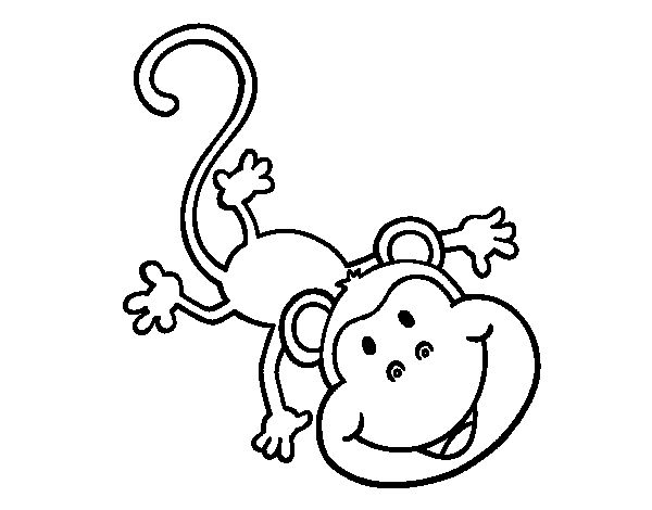 Dibujo de Mono gracioso para colorear | Dibujos de Animales ...
