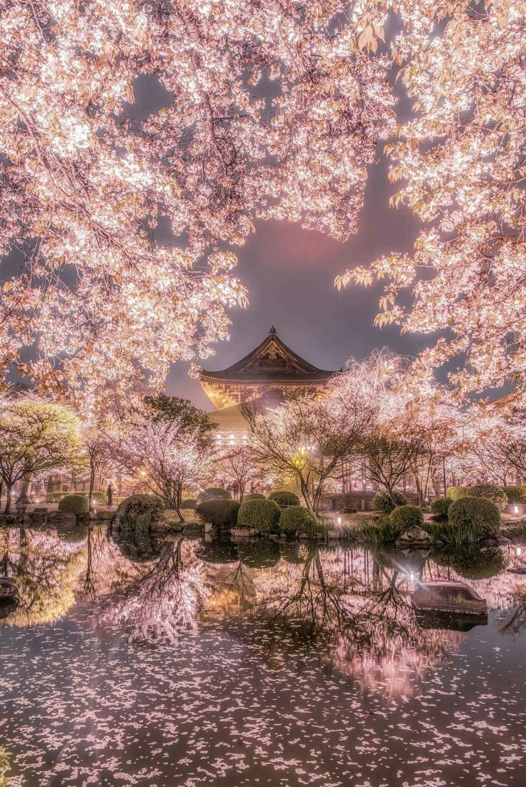 Spring Lights in Japan 日本✔ (Hisanori Manabe) - Wow!!!  ✈✈✈ Don't miss your chance to win a Free Roundtrip Ticket to anywhere in the world **GIVEAWAY** ✈✈✈