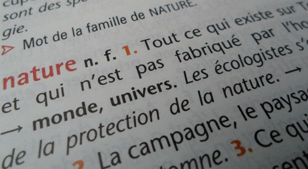 Le lexique de la nature: La Nature, L Environnement, The Terre, French Class, Day, Lexique De, Natural, Lexiqu De, Le Lexique