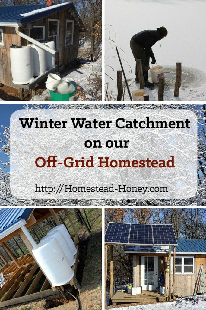 Homestead Honey | Winter Water Catchment on our Off-Grid Homestead | http://homestead-honey.com