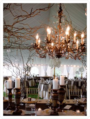 love lights with creepy sticks and twigs. so rustic and fairy tale like
