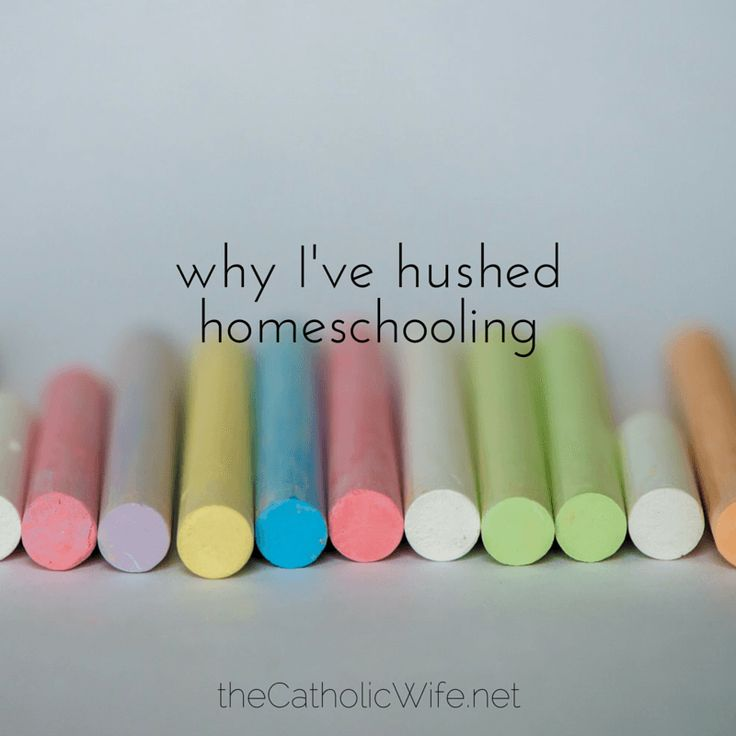 The truth is, I just can't homeschool my kids | Katie Sciba at The Catholic Wife