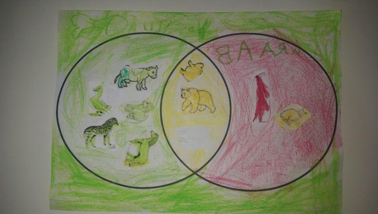 Animals by Baran