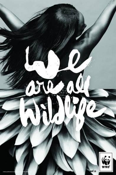 Pour WWF, nous sommes tous des animaux