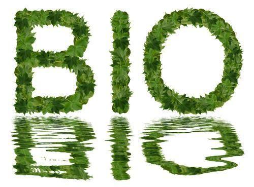 Een artikel wat beschrijft hoe je betaal biologisch groente kunt eten.  Het Odinpakket biedt de aarde een kans en u gezonde voeding!