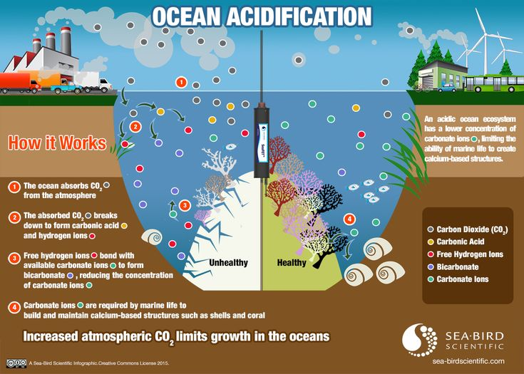 Pin By Sea Bird Scientific On Ocean Acidification Ocean