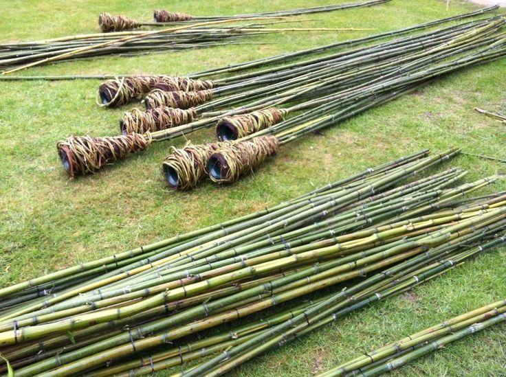 Steekbuis op bamboestok ,omwikkeld met Hop = Humulus