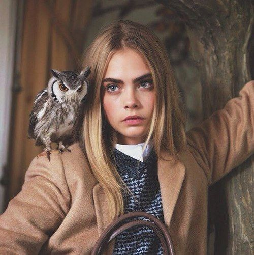 Suspected MK Ultra/Monarch Beta Kitten sex slave Cara Delevingne, once again with the owl- a symbol of the occult elite (think Bohemian Grove).