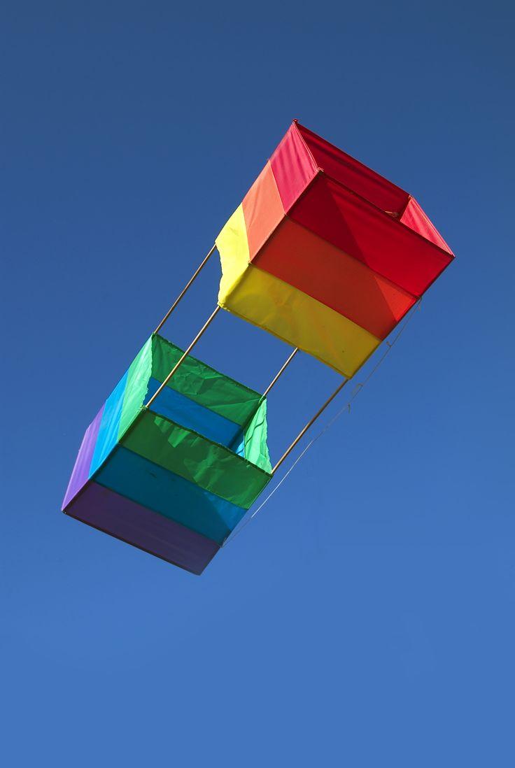 12 best types of kites images on pinterest kite flying kites
