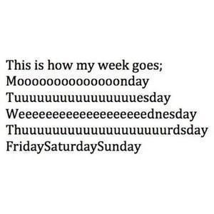 How the week goes