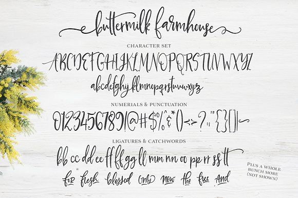 Farmhouse Font Farmhouse Font Lettering Rustic Script Fonts