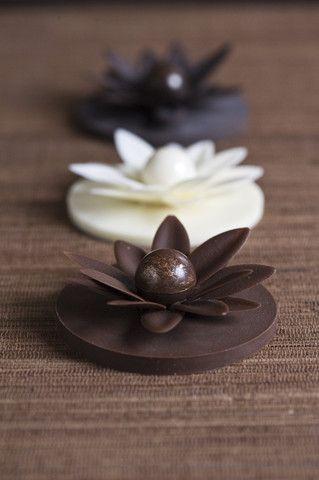 Lotus – Sisko Chocolate
