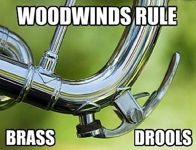 Wood winds need that special cloth, and we brass players don't need that!