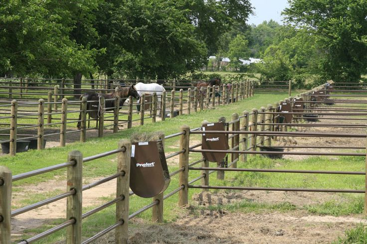 Priefert Horse Facility Horse Paddock Horse Farms