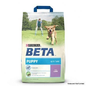 Beta Puppy with Lamb