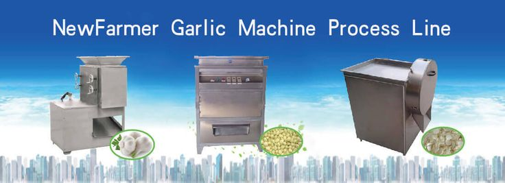 NewFarmer garlic machinery product garlic processing machine line.We offer garlic separate machine,garlic peeling machine, garlic slicing machine ,garlic harvester machine etc. Now our garlic machines have sell to 40+ countries include Canada ,Austria ,India ,South Afraic etc.We promise we will supply good quality of garlic machine ,and meet your need of garlic machine.