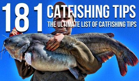 The ultimate list of catfishing tips.