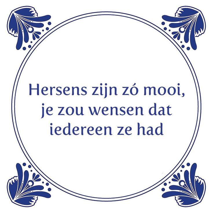 Tegeltjeswijsheid.nl - een uniek presentje - Hersens zijn zo mooi