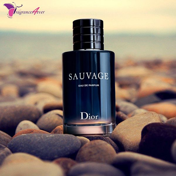 Christian Dior Sauvage Edp 3 4 oz For Men in 2019 | Men's