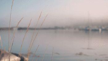 #cinemagraph o fotografia en movimiento