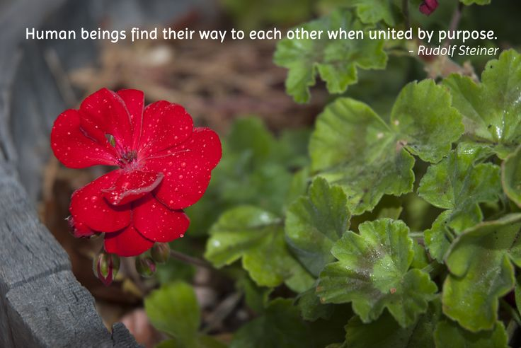 Human beings find their way to each other when united by purpose.