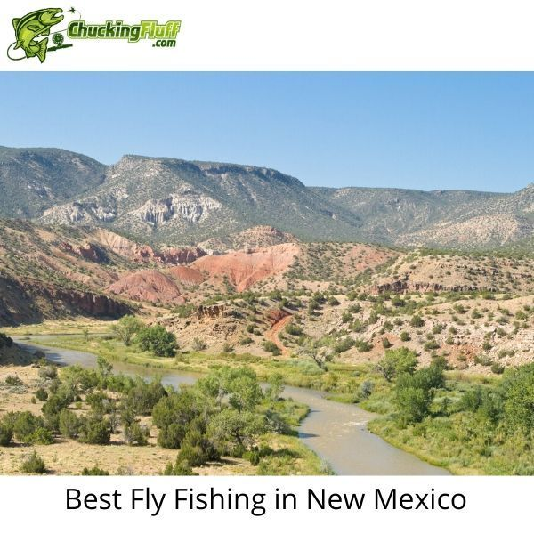 Pin On Fly Fishing New Mexico