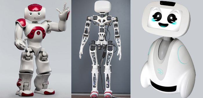 Dans le sillage d'Aldebaran Robotics, devenu l'un des champions mondiaux du secteur, une poignée de jeunes pousses made in France se lance à l'assaut du marché des androïdes. Tour d'horizon des business models en présence.