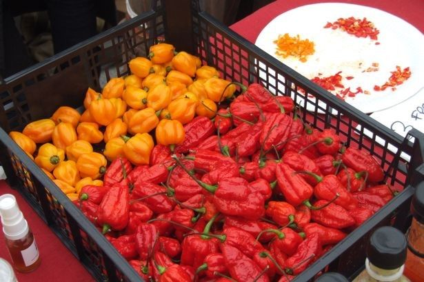 Gower Chilli Festival | Food Events in South Wales | Quality Cottages | http://www.qualitycottages.co.uk/aroundwales/gower-chilli-festival-return-4th-year-running/