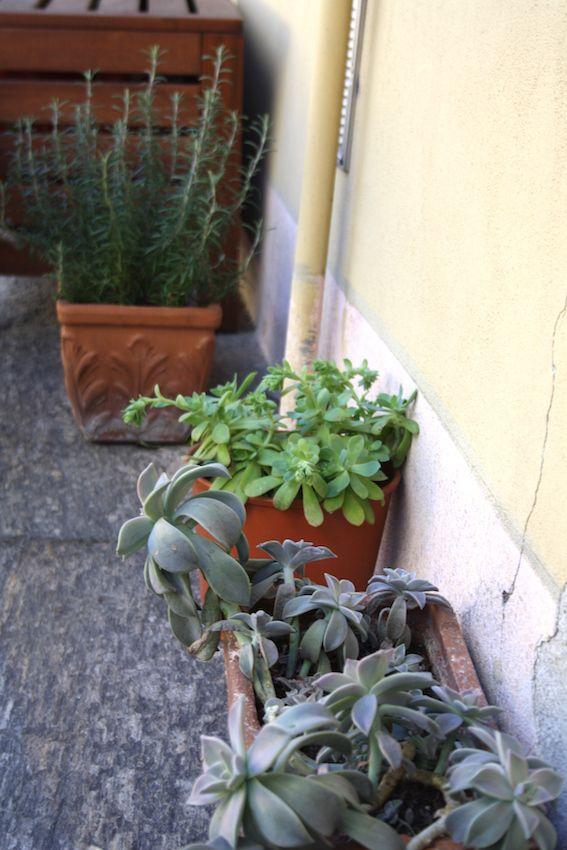 In una piccola corte nel centro storico di Monza, un piccolo appartamento per una giovane coppia e una ristrutturazione low cost. I proprietari, non hanno stravolto quella che era la tipologia dell…