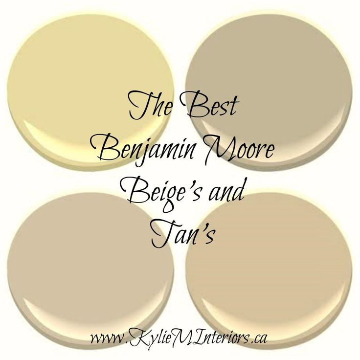 The 5 Best Benjamin Moore Neutral Paint Colours Beige