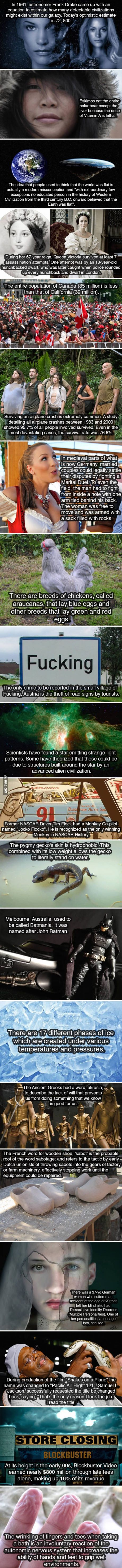 20 Interesting Facts To Refresh Your Brain