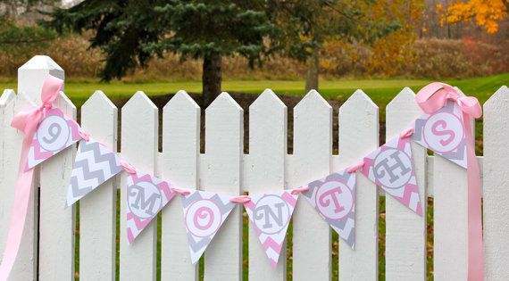 Super cute baby bump photos!  Pink and gray chevron banner for your maternity shoot!  Visit www.darlinginpink.etsy.com to see more designs!  Pregnancy  Baby's First Year Pennant Banner / Newborn Monthly Photo Prop / Pink and Gray Chevron / Custom Baby Shower Decor / Countdown