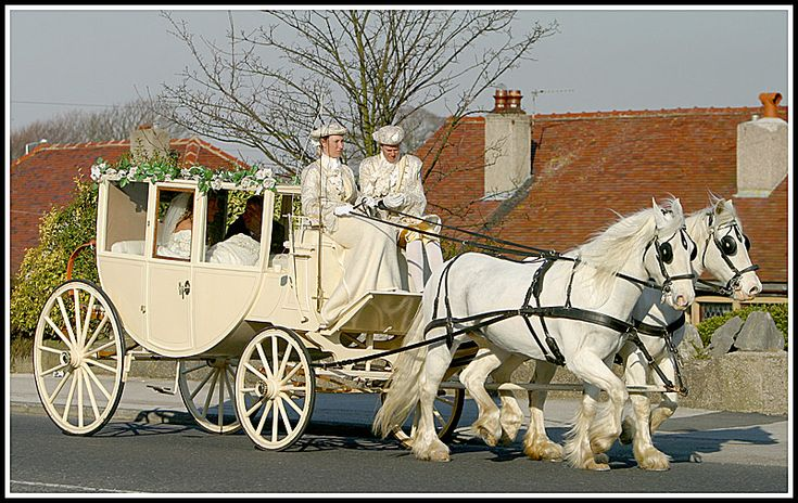 Wedding Coach and Horses. - Heysham, Lancashire