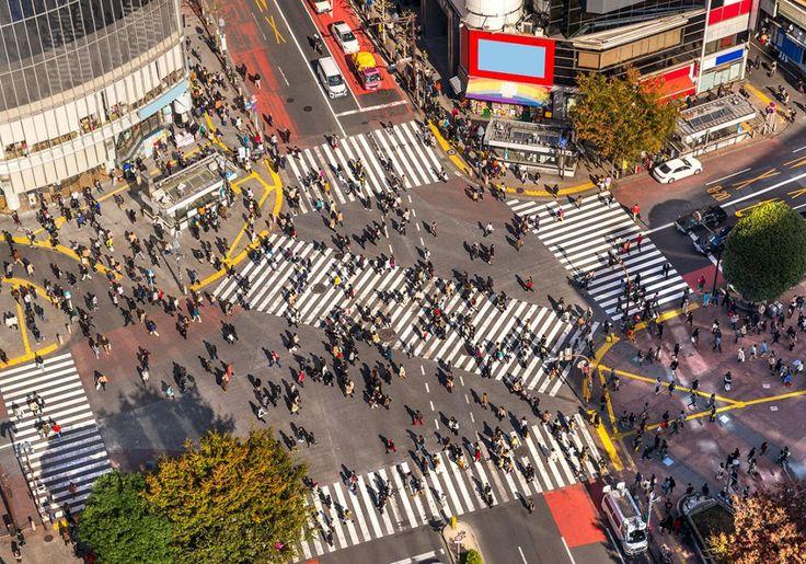 Tokyo i Japan er ét stort mylder af mennesker, reklameskilte og sjove butikker og restauranter. Mest kendt er nok Shibuya Crossing - en fodgængerovergang, der både går på kryds og tværs, og som altid vrimler med mennesker.