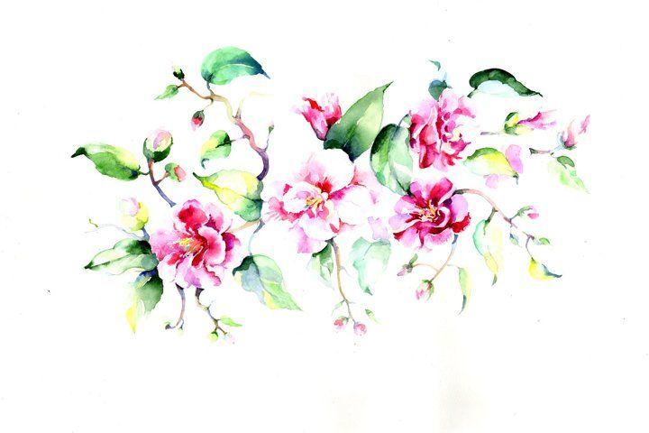 Bouquet Pink Roses Png Watercolor Flowers Set 101529 Illustrations Design Bundles Watercolor Flowers Blue Lotus Flower Pink Roses