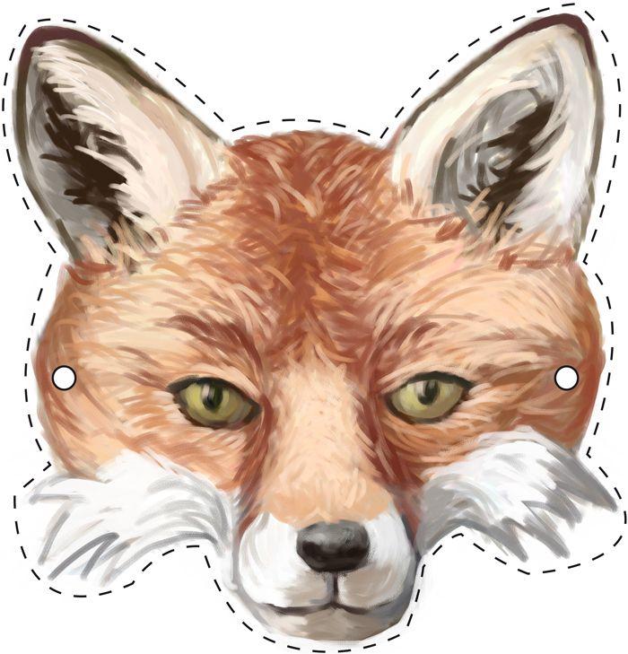 39 besten foxes bilder auf pinterest f chse fuchs und lustige bilder. Black Bedroom Furniture Sets. Home Design Ideas