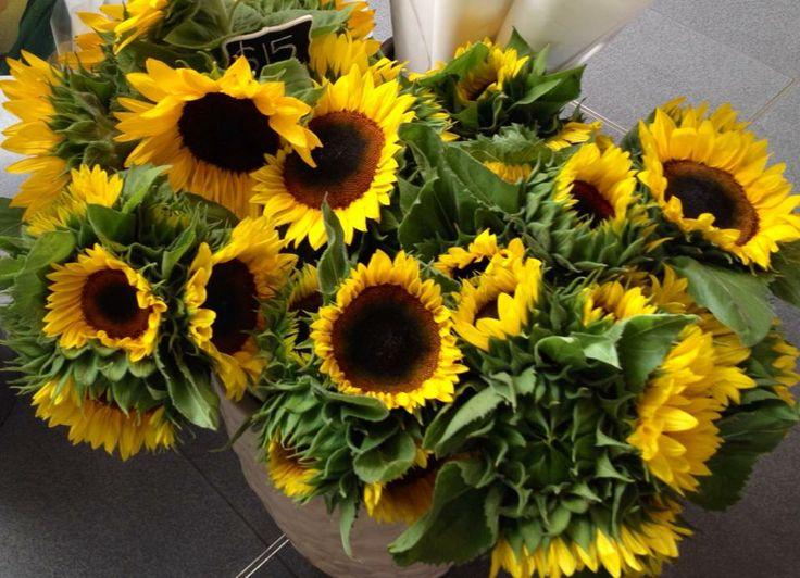 Fresh Sunflowers every Saturday at Marina Mirage Farmers Markets. www.marinamirage.com.au